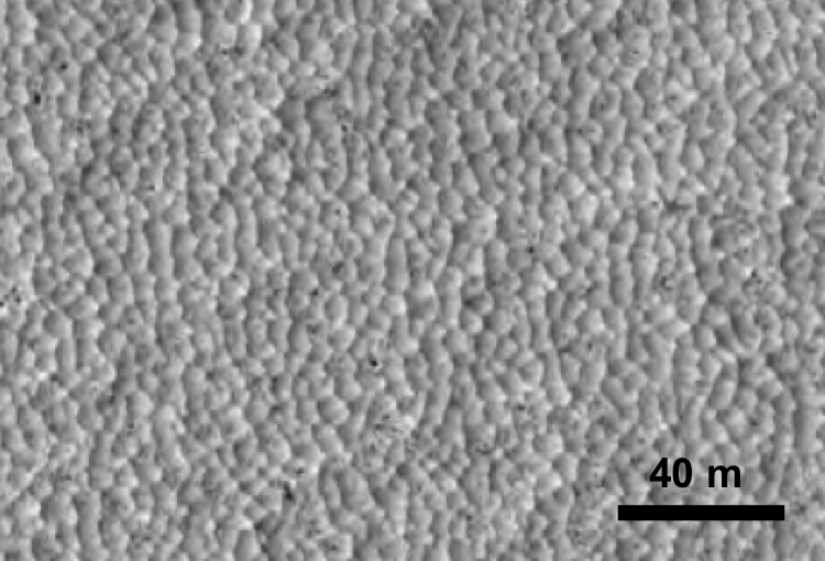 Reticulated dust